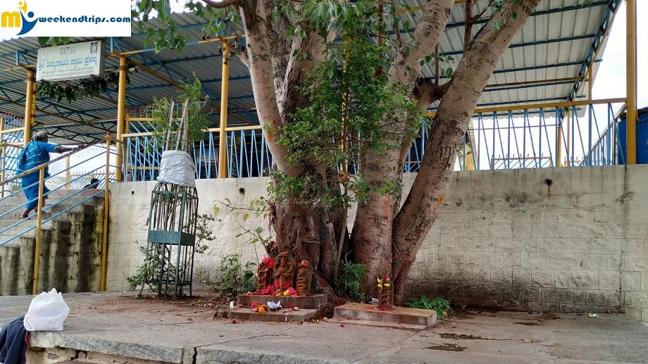 Thimmarayaswamy Fort Temple electronics city